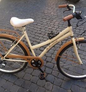 Bicicletta Trekking in Acciaio